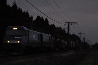 DSC_4127.jpg