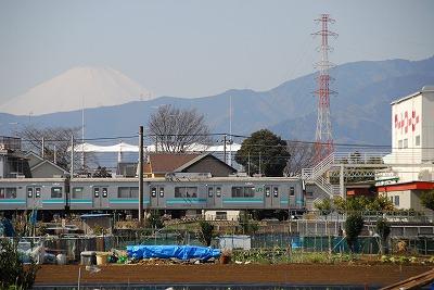 DSC_7367.jpg