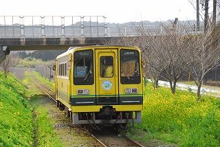 DSC_7565.jpg