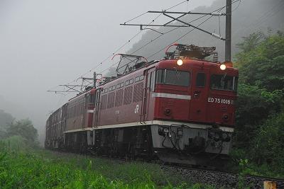 DSC_9129.jpg