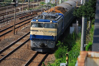 DSC_9482.jpg