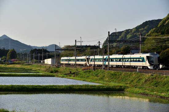 DSC_9506.jpg