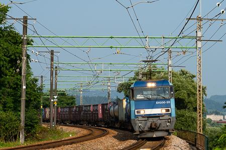 DSC00455.jpg