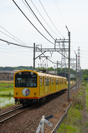 DSC04525.jpg