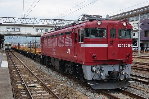 DSC08555.jpg