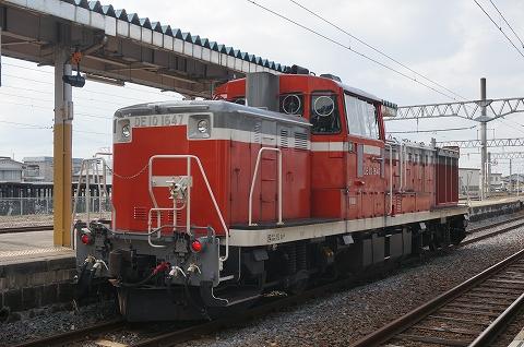 DSC08575.jpg