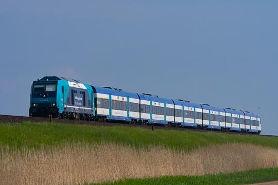 DSC09804-2.jpg